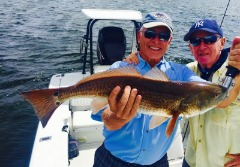 Affirmative Tampa Bay Fishing Charters St Petersburg