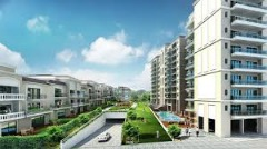 Apartment Residential Project Noida