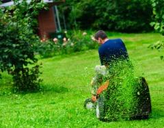 Ortiz Lawn Care