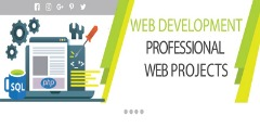 Professional & Custom IT Solutions in the USA