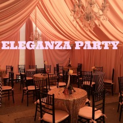 party rentals tents heaters jumpers tables chairs wedding dj services