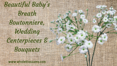 Buy Beautiful Baby's Breath Boutonniere and Wedding Centerpieces