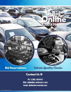Auto Auction Sales & Inspections