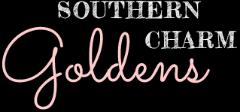 Best European Golden Retrievers