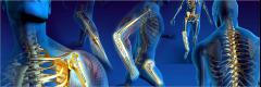 Manufacturer of Orthopedic Implants and Interlocking Nail