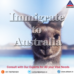 Student Visa Consultant in Hyderabad | Immigration Consultant in Hyderabad