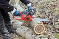 Tree Maintenance LLC
