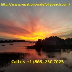 vacationcondofollybeach@gmail.com