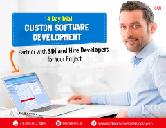 Custom Software Development for Startups