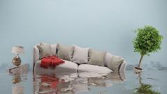Floodex Property Solutions, Inc