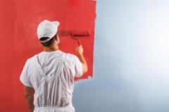 Paint Doctor & Nurses