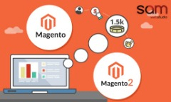 Magento Web Development Company in Delhi