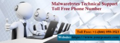 Malwarebytes Phone Number +1-866-959-3523