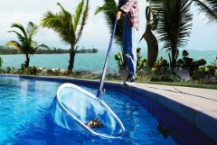 Find the Best Robotic Pool Cleaner Reviews
