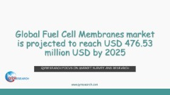 Global Fuel Cell Membranes market is projected to reach USD 476.53 million USD by 2025