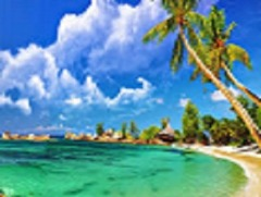 Travel Agent in Andaman
