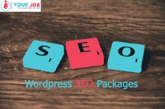 Find Wordpress SEO Packages With In Budget