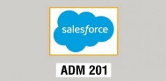 Salesforce Admin 201 Training With Techenoid