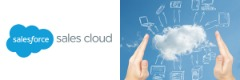 Learn Online Salesforce Sales Cloud Training With Techenoid
