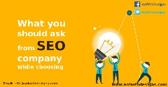 Choose Accurate Company For Website SEO