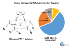 Global Managed Wi-Fi Solution market research
