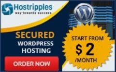 $2 Managed WordPress Hosting Plans in USA.
